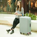 simple stripes luggage cover case sleeve protector travel style degree sg singapore