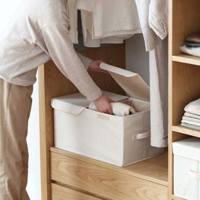 Compartment Storage Box Closet Wardrobe Organizer Organiser Clothes Style Degree Sg Singapore