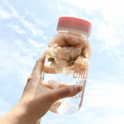 classy glass bottle tumbler tea fruits thermal flask flasks vacuum style degree sg singapore