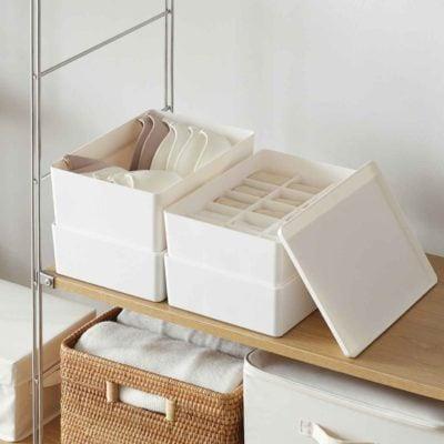 Pristine Undergarment Organizer Box Storage Underwear Lingerie Bra Socks Wardobe Organiser Style Degree Sg Singapore
