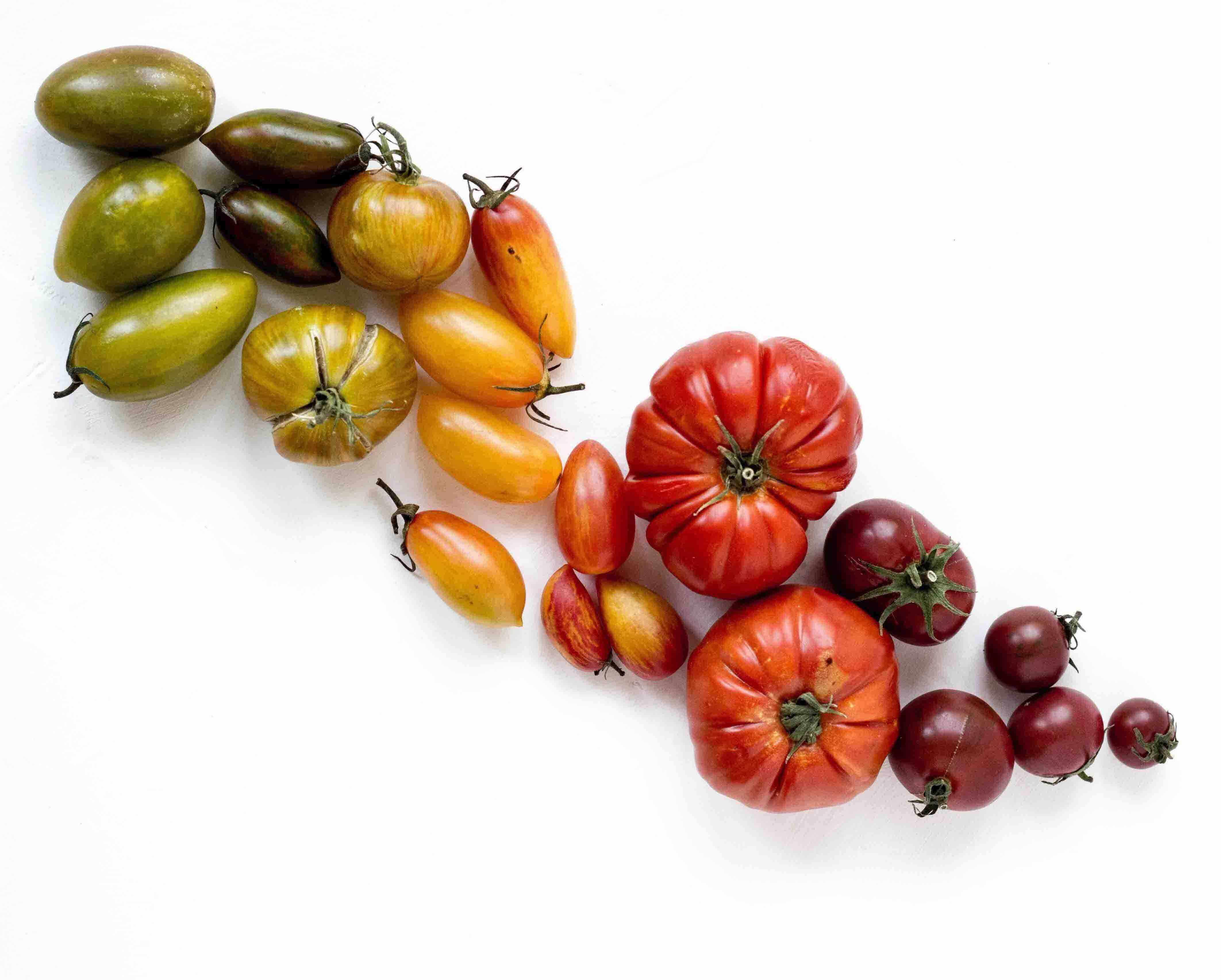 fruits and vegetables fresh in fridge how to keep vegetables fresh longer