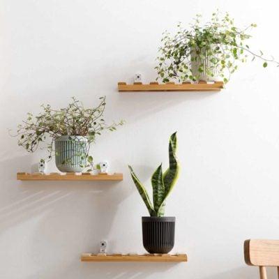 Timber Wall Holder Holders Wooden Organizer Organiser Home Decor Living Room Style Degree Sg Singapore
