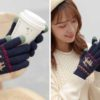 Sonata Winter Gloves (Touch Screen Sensitive) Winter Travel Accessories Touchscreen Gloves Style Degree Sg Singapore
