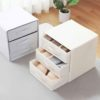 Foldable Drawer Closet Organizer Undergarment Bra Socks Wardroble Organiser Storage Box Style Degree Sg Singapore
