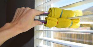 window tongs cleaning diy tip