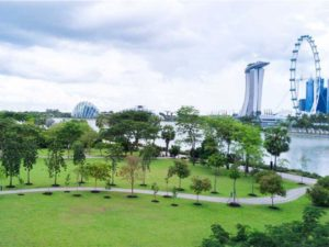 Gardens by the Bay East, Best Picnic Spots, Picnic spots for families and couples, Outdoors, Style Degree, SG, Singapore, StyleMag