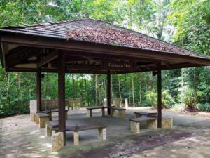 Chinese garden, Japanese garden, Jurong, Best Picnic Spots, Picnic spots for families and couples, Outdoors, Style Degree, SG, Singapore, StyleMag
