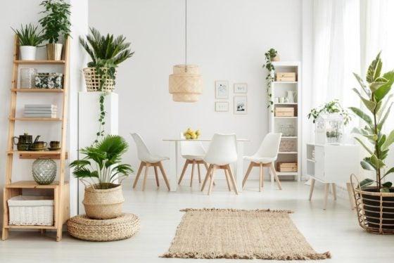 14 Best Indoor Plants & Easy Edibles To Grow In Singapore