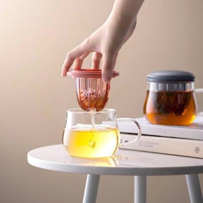 2-in-1 Tea Infuser Fruit Juicer Glass Mug Tea Pot High Borosilicate Glass Cup Style Degree Sg Singapore