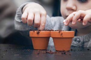 gardening for kids, gardening edibles,