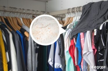 Mold In Clothes? Here's How To Keep Your Wardrobe Mold & Moisture-free