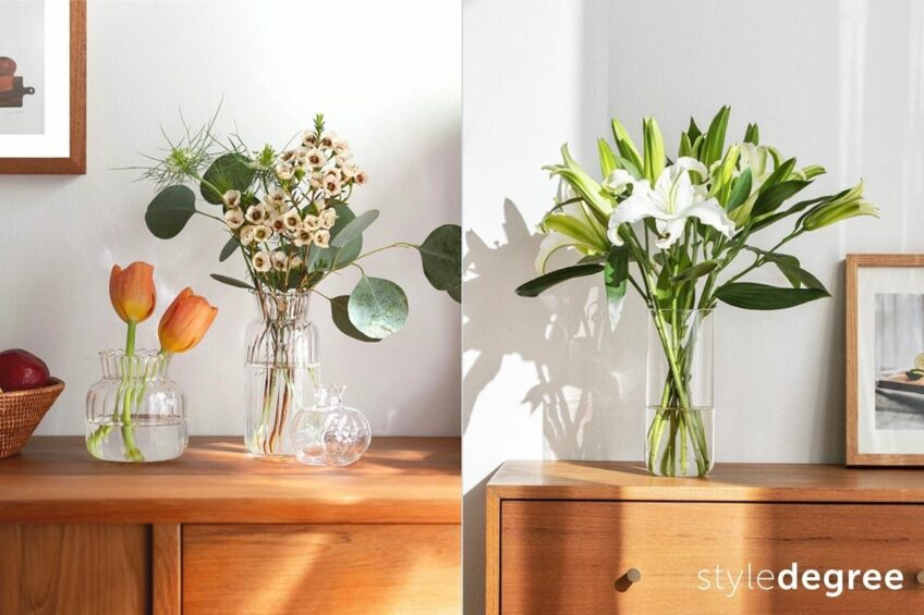Where To Put Plants In Your House (+ Feng Shui Tips!)