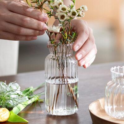 Tranquil Mini Flower Vase Plant Home Garden Holder Style Degree Sg Singapore