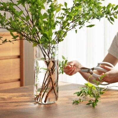 Tranquil Tall Flower Vase Plant Home Garden Holder Style Degree Sg Singapore