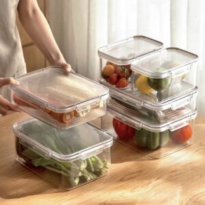 Freshly Large Food Containers