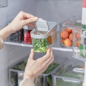 Garnish Rectangle Food Container (With Drainer)