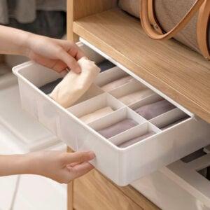 Pristine Under Shelf Undergarment Storage Box Bra Socks Drawer Holder Style Degree Sg Singapore