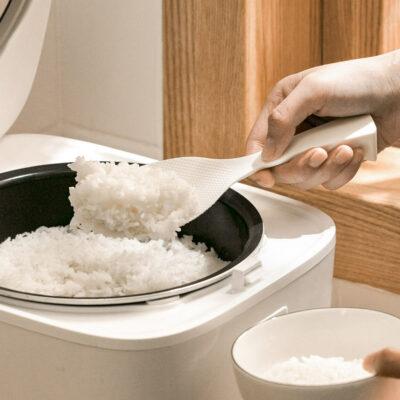 Self-Standing Rice Scoop